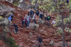 Arches and Canyonlands national parks to close due to coronavirus. Some who live around Zion National Park are rooting for it to be next.
