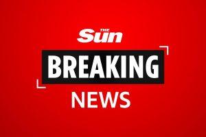 Greenacre crash – Twelve people injured after SUV smashes into Muslim fashion shop in Sydney