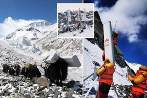 World's biggest 5G tower installed on Mount Everest using yaks to lug 'controversial' equipment up tracks